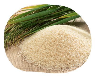 食材へのこだわりお米